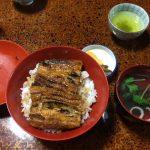 【東海エリア】鰻好きなら知っている!?設楽町の富田屋