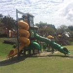 【子供の遊び場】みよし市の細口公園はのどかで春には梅が綺麗